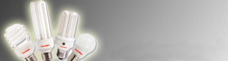 Ampoules Economiques